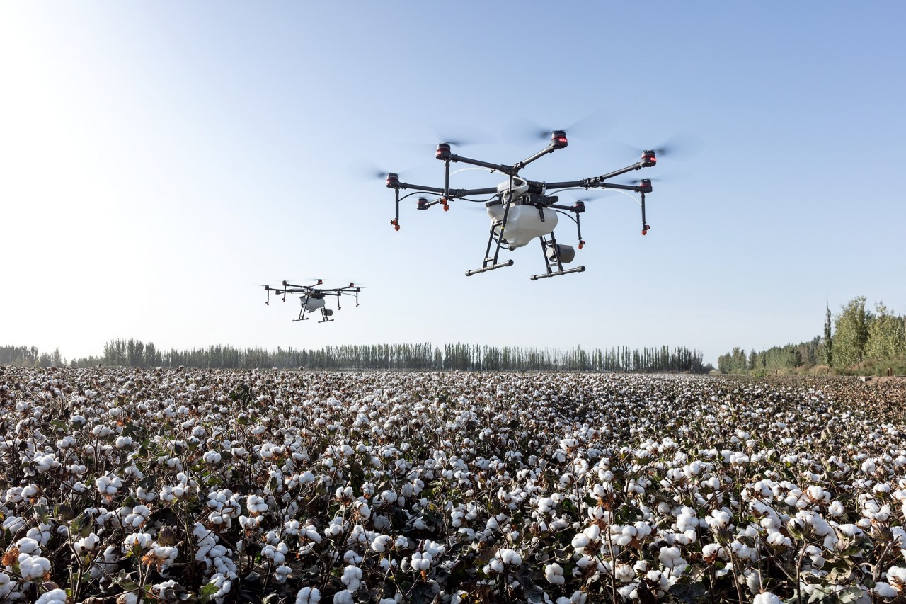 Drones flying through field