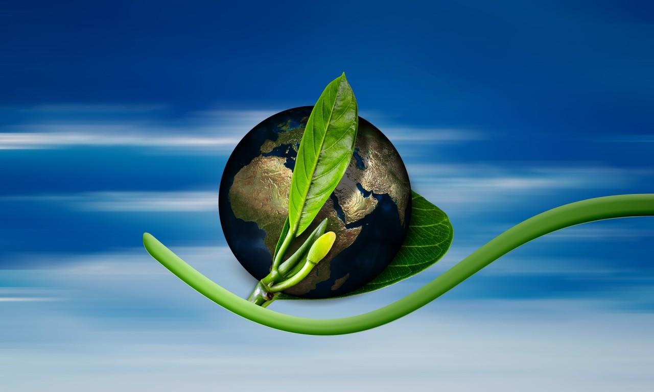 eco-friendly globe